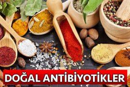 doğal antibiyotikler nelerdir