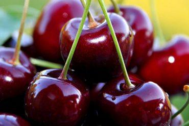 detoks diyeti nasıl yapılır