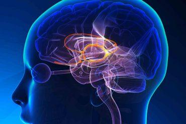 MS hastalığı belirtileri nedir