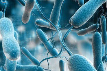 kolera hastalığı nedir, kolera tedavisi