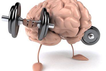 hafıza güçlendirme nedir, hafıza güçlendirmek için