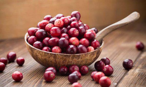 kızılcık faydaları, şerbeti ve marmelatı nasıl yapılır